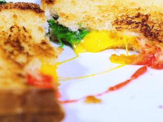 3-Color Mozzarella Sandwich -