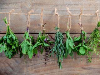 How to Keep Fresh Herbs Fresh for a Week.