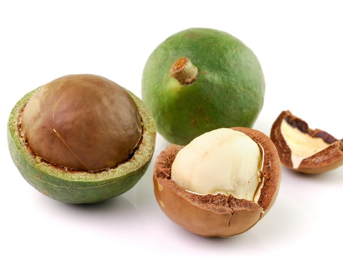 Best and Worst Nuts for Your Health: Macadamia Nuts