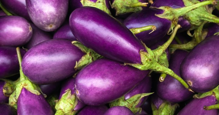 Cooking Eggplant: What Mistakes to Avoid