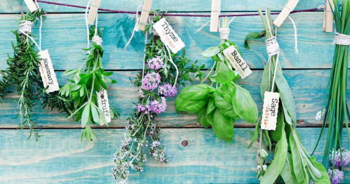Let's Get You Started on Cooking with Herbs