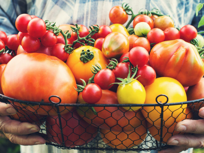 The Most Popular Tomato Types. How They Look and What They're Good For.
