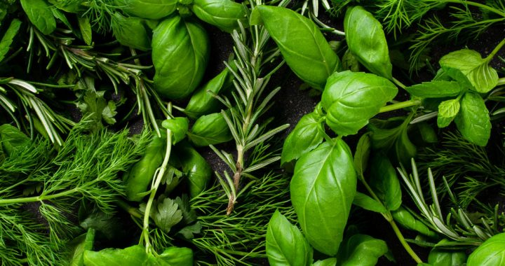 Basic Herbs to Keep in Your Kitchen at All Times
