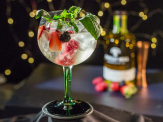Forest Fruit Gin and Tonic