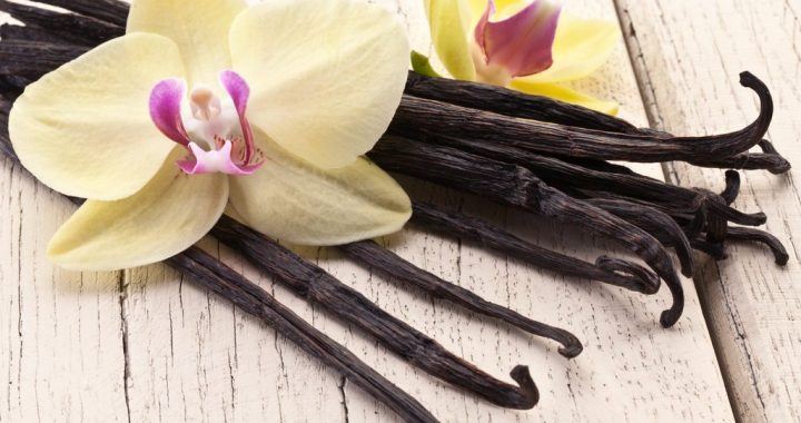 Flavors Unlocked: Everything about Cooking with Vanilla Beans