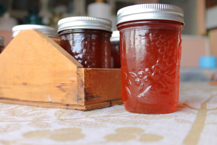 Back to Fall: A Simple Guide to Canning -