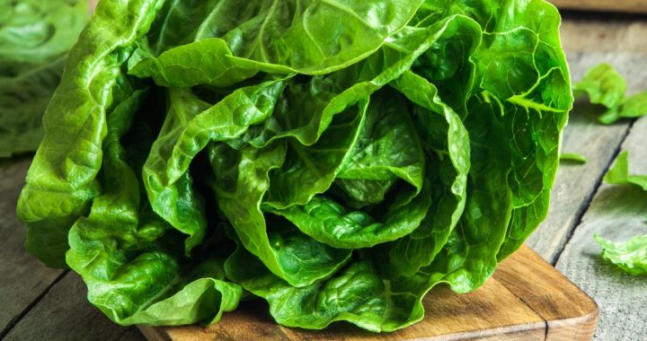 Americans and Canadians: Don't Eat Romaine Lettuce!