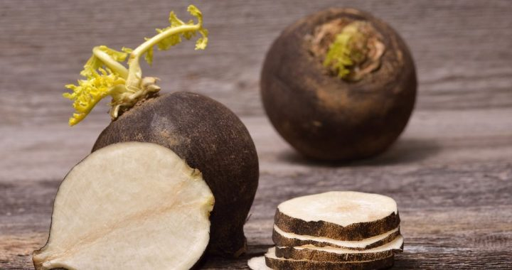 Cooking with Black Radish: What You Need to Know