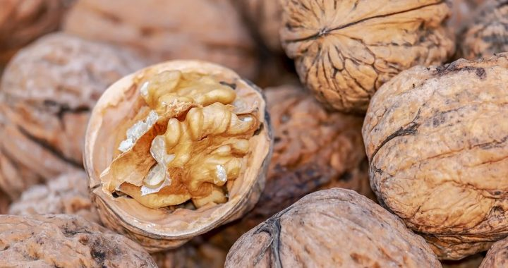 Protective Walnut Power, Subject of Another Study -