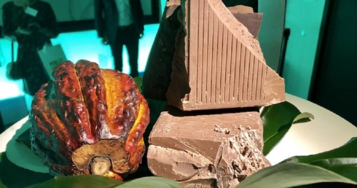 Introducing A New Kind of Chocolate Using 100 Percent Of The Cacao Fruit -