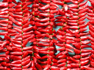 Chili peppers as superfoods
