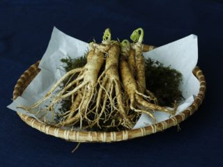 Ginseng roots in a basket